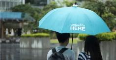 우산을 공유해 드려요. Umbrella HERE