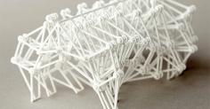 3D프린터로 제작 테오 얀센의 작품