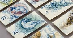 지폐가 새로 디자인된다면 어떻게 될까요?