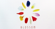 [부산] BLOSSOM :동서대학교 산업디자인과 졸업전시