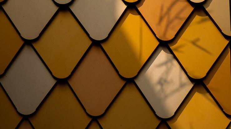 수상작_The Perpetual Golden Leaf (3).jpg