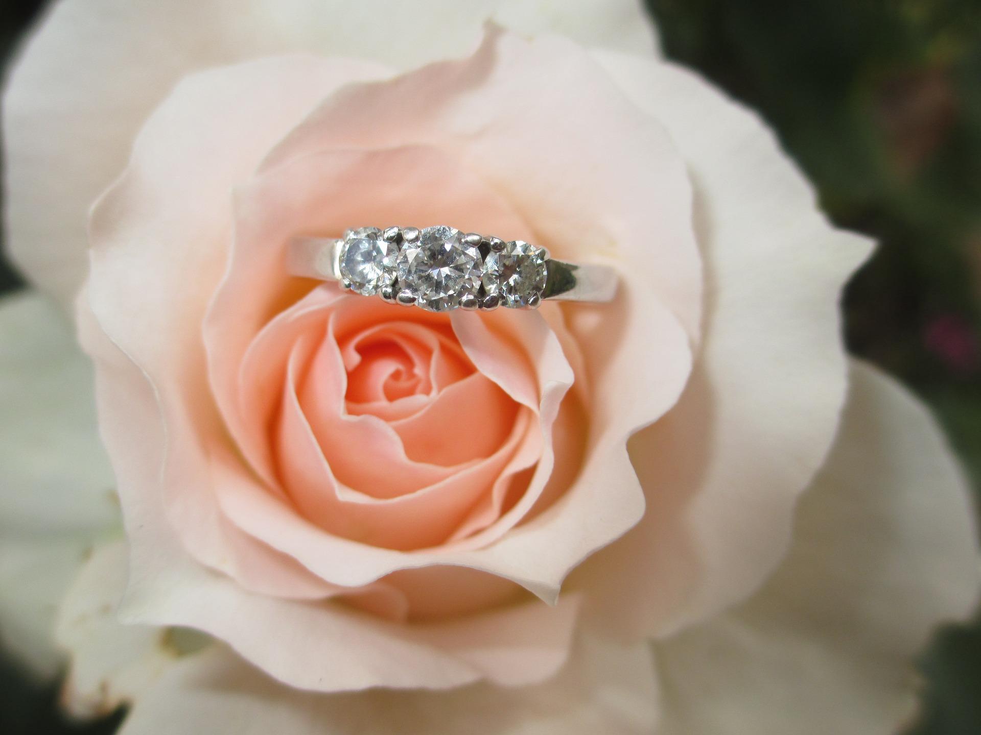 ring-1665611_1920.jpg
